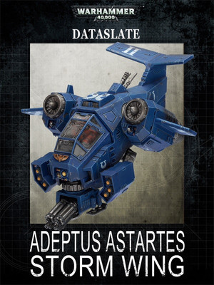 Adeptus Astartes Storm Wing 6th edition
